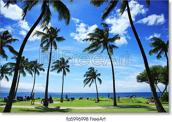 Free Art Print Of Beautiful Tropical Beach In Hawaii