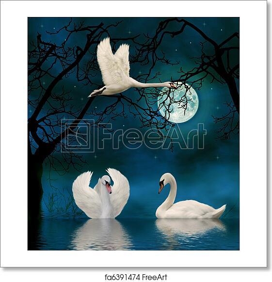Swans By Moonlight >> Free Art Print Of Swans In The Moonlight 3d Render Freeart