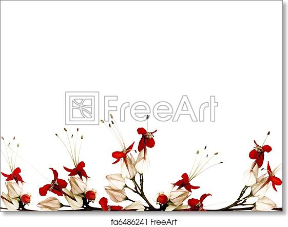 Free Art Print Of Red Black And White Butterfly Flower Border