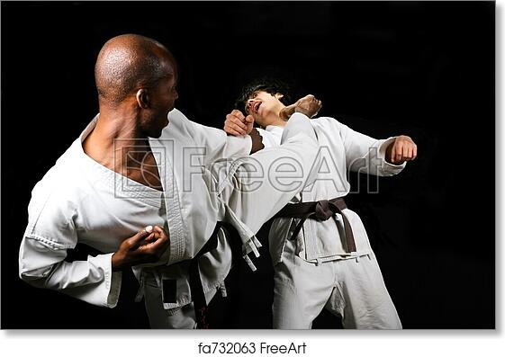 free art print of karate fight african american versus caucasian