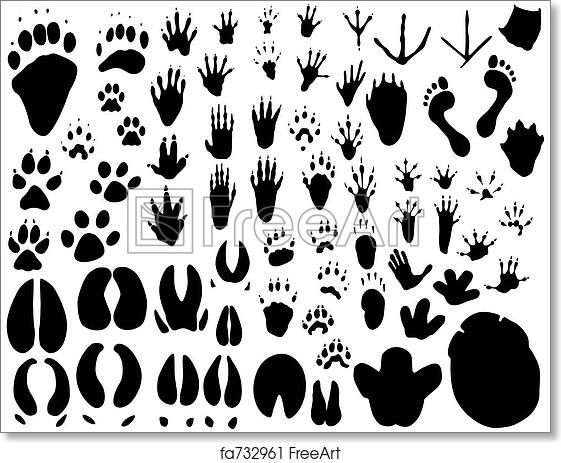 graphic regarding Free Printable Animal Tracks identified as Absolutely free artwork print of Animal songs