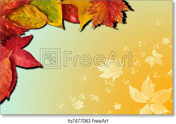 free art print of vibrant autumn fall season leaves on faded