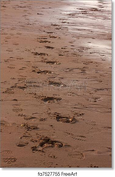photo relating to Footprints in the Sand Printable referred to as No cost artwork print of Footprints inside the sand