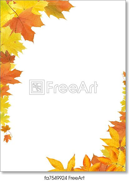 graphic about Printable Fall Leaf named No cost artwork print of Tumble Leaves Border
