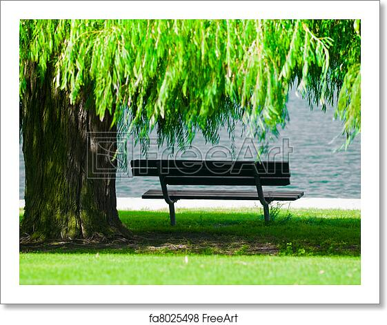 Free Art Print Of Park Bench With Weeping Willow A Park Bench In