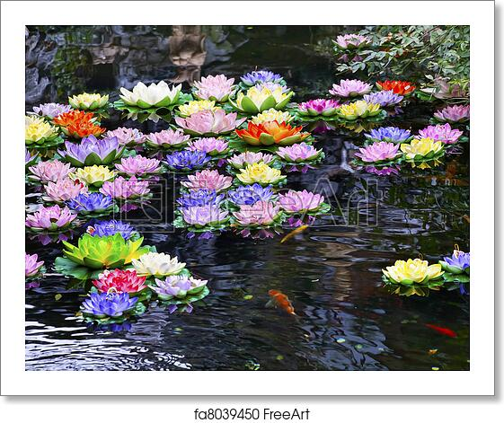 Free art print of carp pond colorful artificial water for Artificial pond water