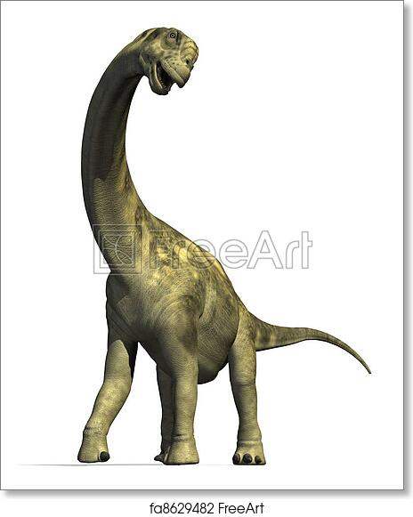 Free art print of Camarasaurus Dinosaur 2. The Camarasaurus dinosaur lived  in North America during the late Jurassic Period - 3D render. 7d672c94c086