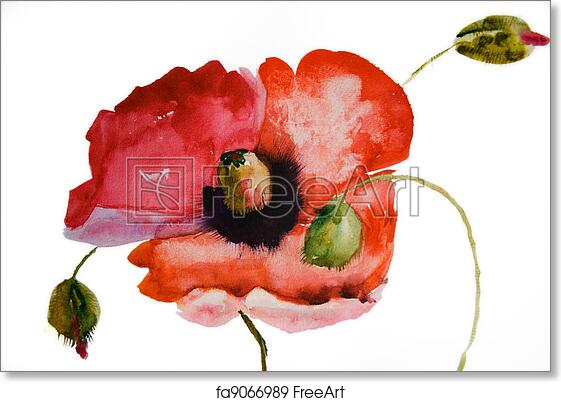 Free art print of watercolor poppy flower freeart fa9066989 mightylinksfo
