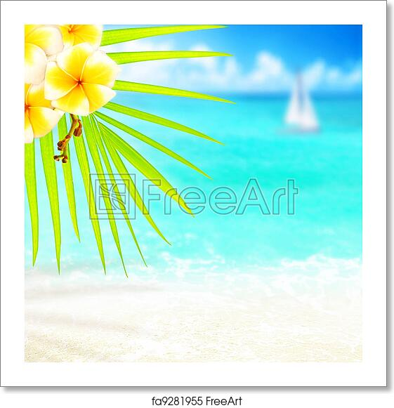 Tropical Beach Border