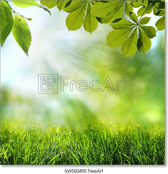Free Art Print Of Abstract Spring And Summer Backgrounds