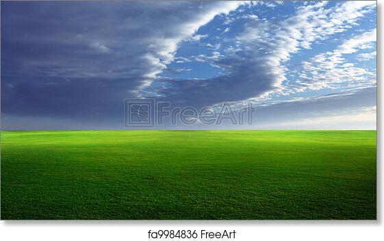 Free art print of grassy field grassy meadow with lush green grass free art print of grassy field voltagebd Images